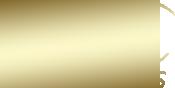 Noga Eliezer Logo